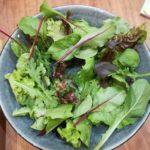 リーフのサラダ画像